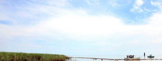 BP ha conseguido instalar la campana metálica sobre la fuga de crudo