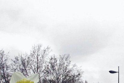 Cielos nubosos en el norte peninsular con posibilidad de lluvia
