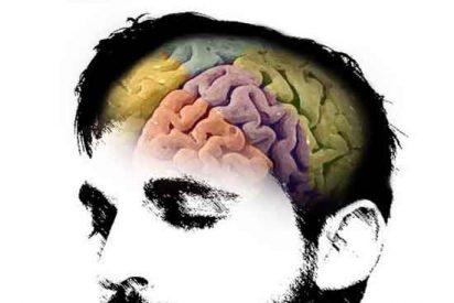 Hallan los genes que regulan la relación sueño-hambre