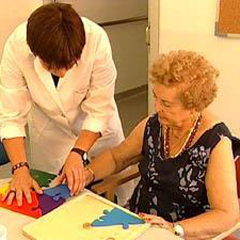 La Fundación Pasqual Maragall iniciará en 2011 una macroinvestigación para detener el Alzheimer