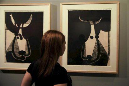 El Picasso más taurino sale por primera vez de su museo y llega a Salamanca