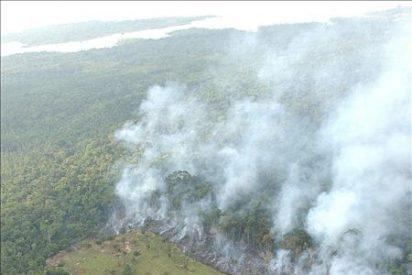 El aumento de los incendios forestales en la Amazonía preocupa a los científicos