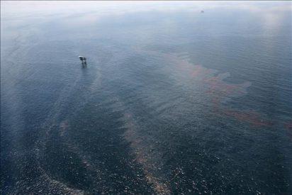 """La """"marea negra"""" puede llegar hoy a las playas del noroeste de Florida"""
