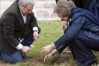 La Reina inaugura un Centro de Educación Ambiental en una zona afectada por el incendio de Guadalajara