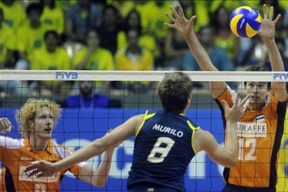 3-1. Brasil se recupera y se impone a Holanda