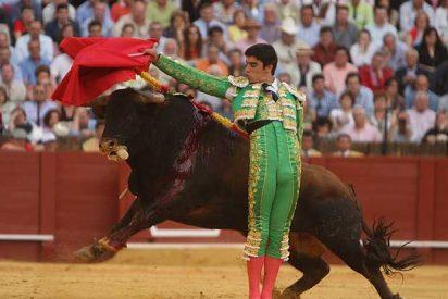 Herido grave el torero Miguel Angel Perera por una cornada en la rodilla