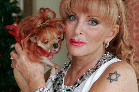 Tres perros heredan una mansión de siete millones de dólares en Miami Beach