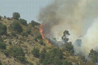 España registra en lo que va de año la menor cifra de incendios forestales desde 2007