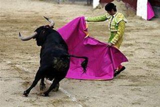 Andalucía celebró 471 festejos taurinos en 2009, el 17% del total nacional, y generó 60 millones de euros directo