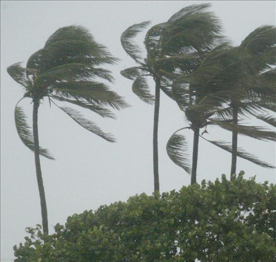 Emiten el nivel máximo de alerta en Uruguay por temporal de lluvia y viento