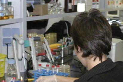 Científicos avanzan en el conocimiento genético de las enfermedades complejas