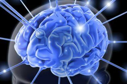 Sorpresa, sorpresa: He descubierto que comer poco y sano mejora la actividad cerebral y el trabajo intelectual
