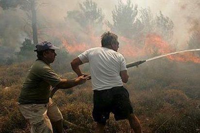 El 95% de los incendios forestales son causados por el hombre