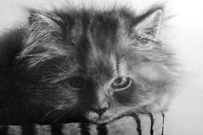 Paul Lung, el maestro del lápiz que da vida a los gatos