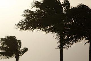 'Danielle' pierde fuerza y se vuelve tormenta de categoría 2
