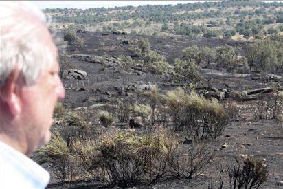 """Alcalde de Villarino asegura """"el incendio no se ha reproducido, volvieron a prender"""""""