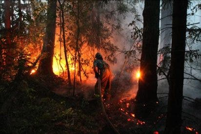 Ascienden a 50 los muertos en los incendios forestales en Rusia