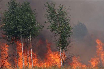 Remiten los incendios forestales y Moscú se libra del humo