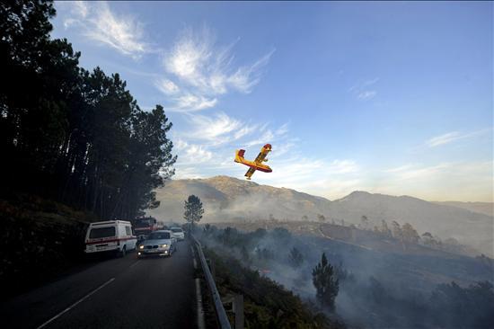 Portugal registra 289 incendios, la mayoría en el norte