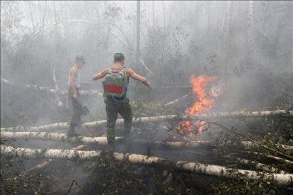 Sofocados los incendios forestales en 8.000 hectáreas en Rusia en las últimas 24 horas
