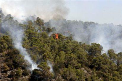 Un cambio del viento extiende el fuego al norte en Benirràs y lo reaviva