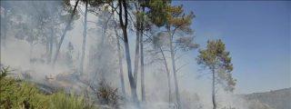 Sigue activo el incendio que quemó al menos 100 hectáreas en Viana do Bolo
