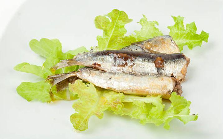 sardinas en escabeche al orégano