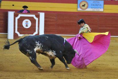 El PP pide que los espectáculos taurinos dependan de Cultura