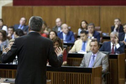El Parlamento andaluz acepta tramitar una iniciativa para prohibir los toros