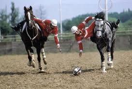 La Copa de España de Autonomías tendrá lugar en la Fira Equus Gerona 2010
