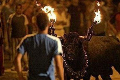 El Parlamento catalán blinda los «correbous» como bien cultural dos meses después de prohibir las corridas de toros