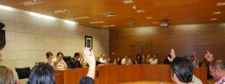 El Pleno del Ayuntamiento de Totana acuerda la creación de un Centro de Referencia para Enfermedades Raras
