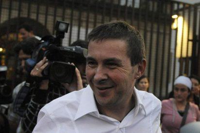 Otegi pide a la Audiencia Nacional salir de prisión