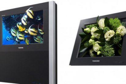 Toshiba lanzará el primer televisor 3D sin gafas en Japón a finales de 2010