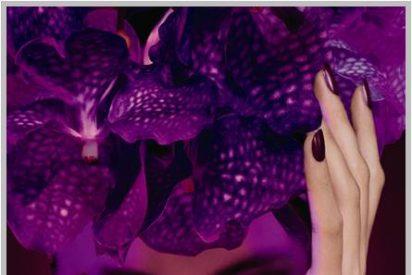 Hypnotic Poison, el perfume más narcótico y voluptuoso de Dior