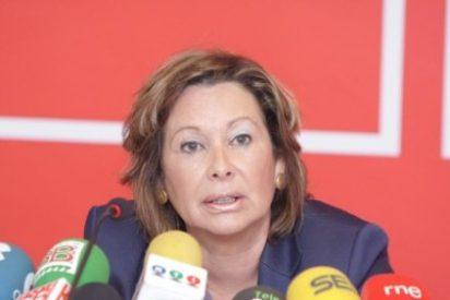 Luengo (PSOE): La metepatas del caso Tebeto