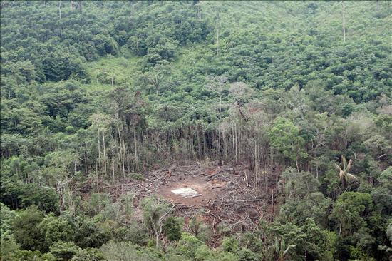 CIDH acepta denuncia contra Colombia por muerte de ecuatoriano en bombardeo a las FARC