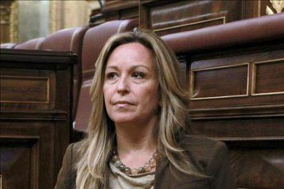 Los grupos del Senado, excepto el PSOE, condenan la actuación de Marruecos