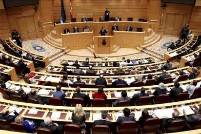 El Senado renovará el Tribunal Constitucional el próximo 2 de diciembre