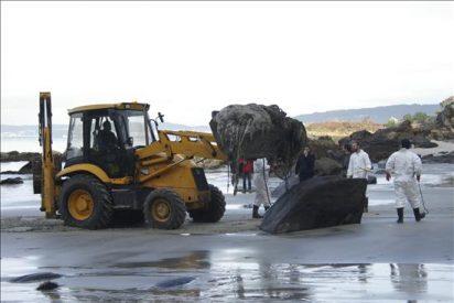 Desentierran y retiran el cuerpo de un cachalote, varado en abril en una playa de Marín