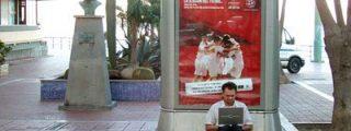 El 'Wi-Fi' es perjudicial para los árboles