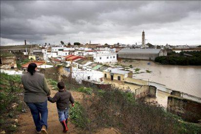 Desalojadas cien viviendas en Lora del Río por la crecida del Guadalquivir