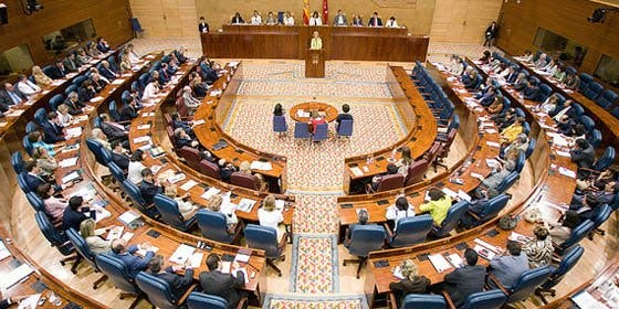 La Asamblea apoya la participación de todos los nuevos madrileños en las elecciones municipales del 2011