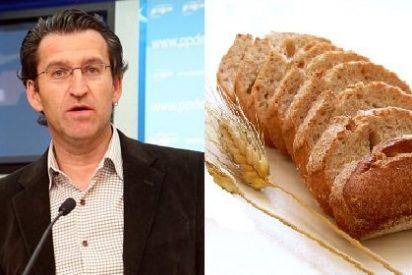 """Feijóo es """"tan bueno como el pan"""""""