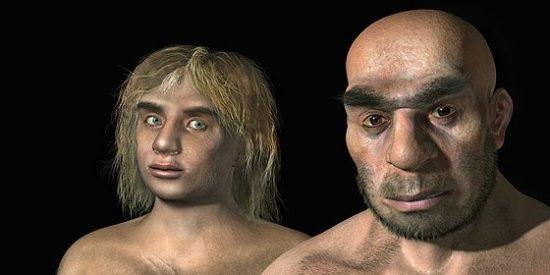 Los neandertales, unos «gourmets» con las verduras