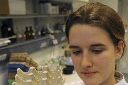 Los afectados reclaman más de 100 millones por el escándalo de la dioxina en Alemania