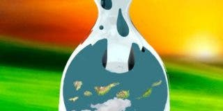La Wikileaks canaria