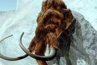 «Resucitarán» a un mamut dentro de cinco años