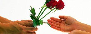 ¿Es el amor una irresistible reacción química?
