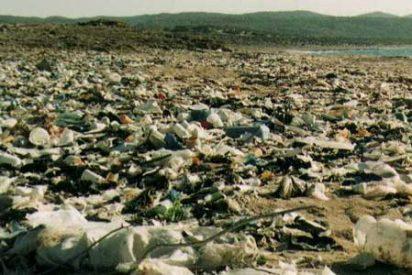 Campaña para reducir el uso de las bolsas de plástico